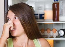 refrigerator smells